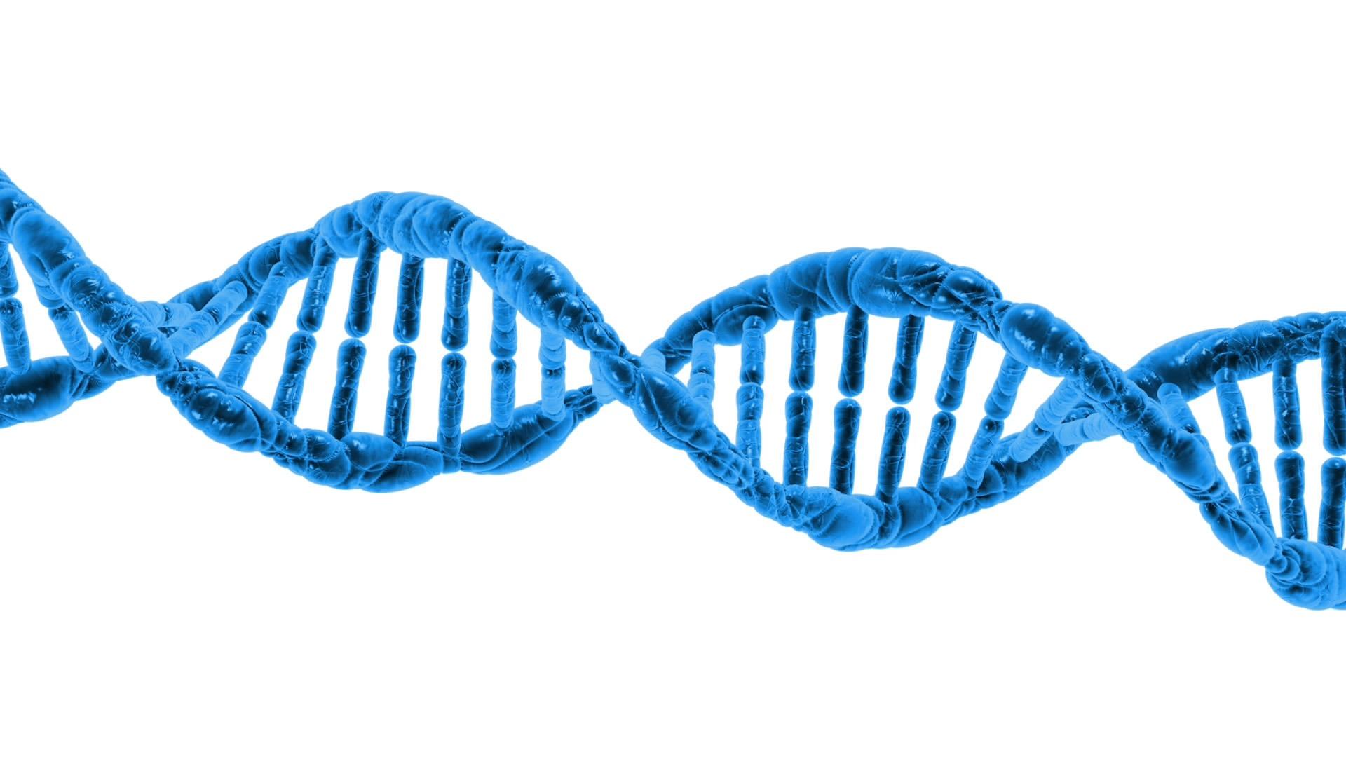 la réparation de l'ADN récompensée